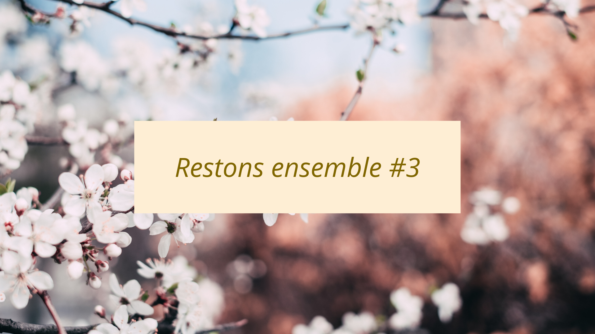 Restons Ensemble #3