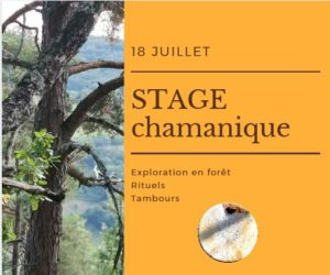 stage chamanique