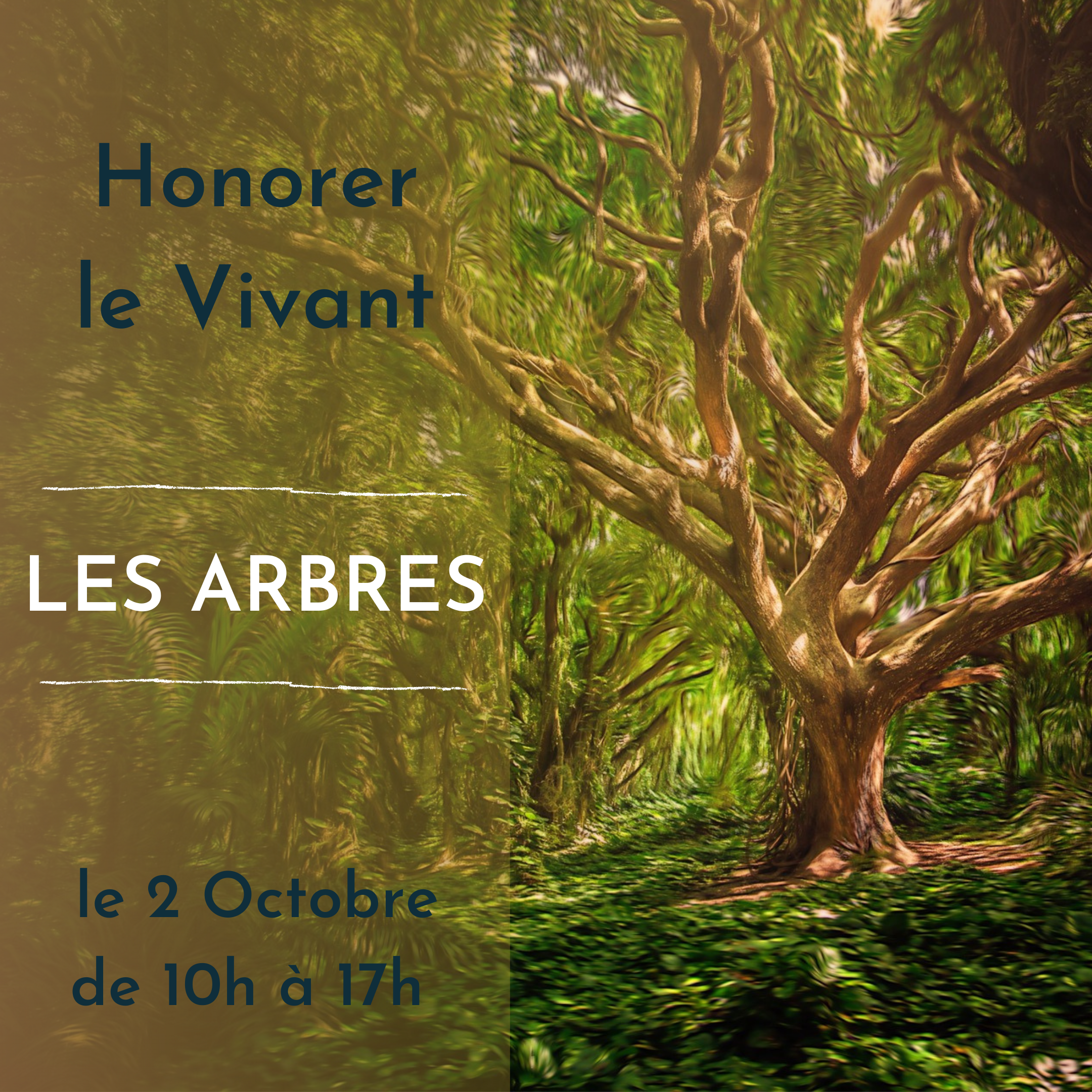 Honorer Le Vivant - Les Arbres
